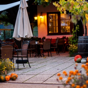 Die Weinterrasse im Herbst